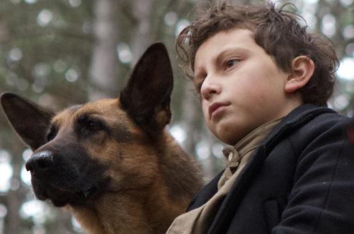 «Моя собака – герой» - не ради награды. Премьера на канале «КиноСат».